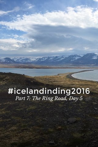 #icelandinding2016 Part 7: The Ring Road, Day 5