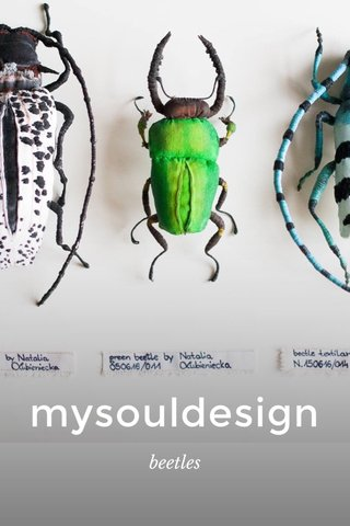 mysouldesign beetles