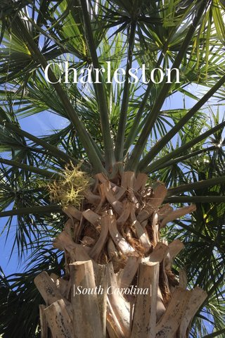 Charleston |South Carolina|