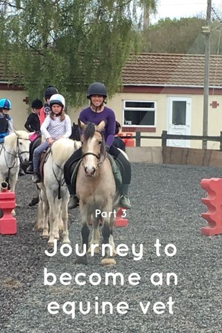 Journey to become an equine vet Part 3