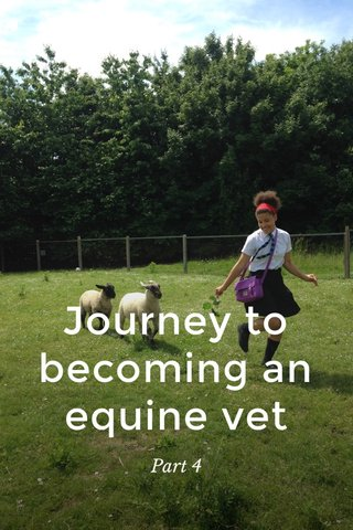 Journey to becoming an equine vet Part 4