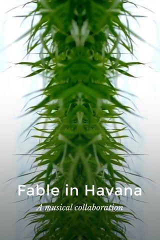 Fable in Havana A musical collaboration