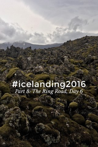 #icelanding2016 Part 8: The Ring Road, Day 6
