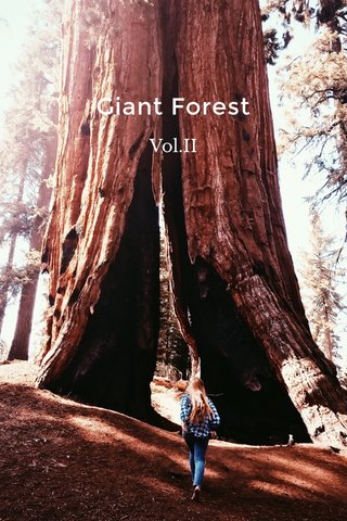 Giant Forest Vol.II