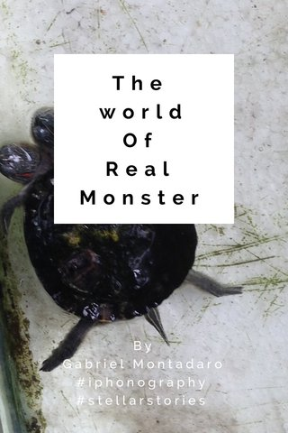 The world Of Real Monster By Gabriel Montadaro #iphonography #stellarstories