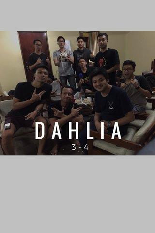 DAHLIA 3-4