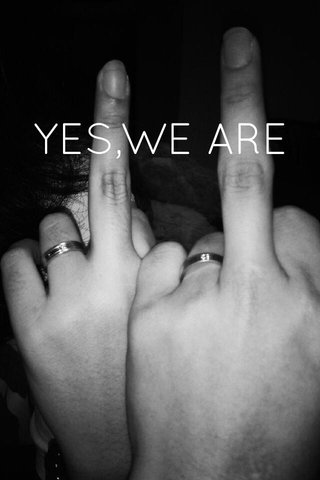 YES,WE ARE