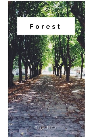 Forest The life