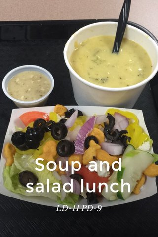 Soup and salad lunch LD-11 PD-9