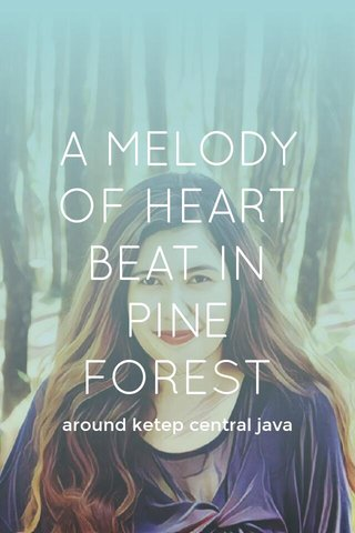 A MELODY OF HEART BEAT IN PINE FOREST around ketep central java