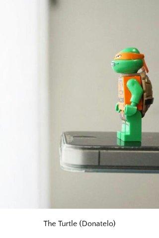 The Turtle (Donatelo)
