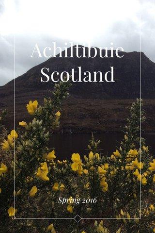 Achiltibuie Scotland Spring 2016