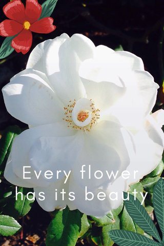 Every flower has its beauty