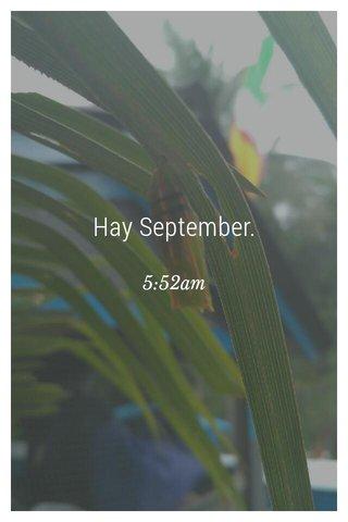 Hay September. 5:52am