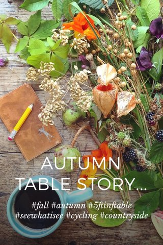 AUTUMN TABLE STORY... #fall #autumn #5ftinftable #seewhatisee #cycling #countryside