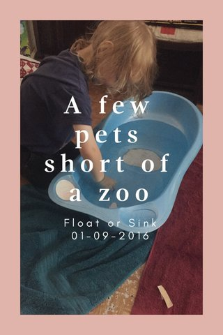A few pets short of a zoo Float or Sink 01-09-2016