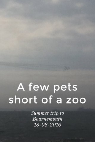 A few pets short of a zoo Summer trip to Bournemouth 18-08-2016