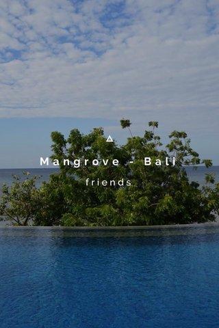 Mangrove - Bali friends