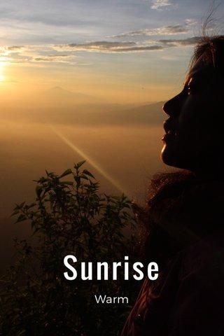 Sunrise Warm
