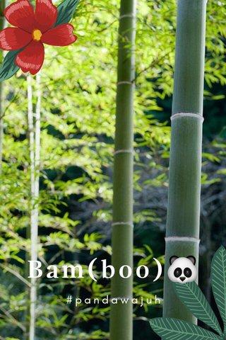 Bam(boo)🐼 #pandawajuh