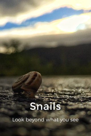 Snails Look beyond what you see