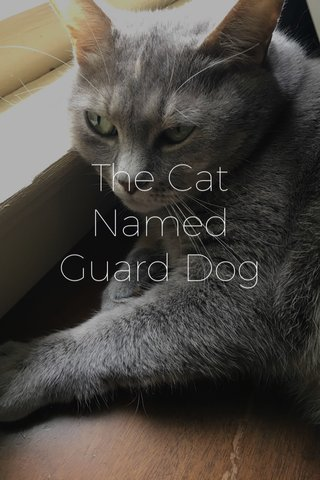 The Cat Named Guard Dog