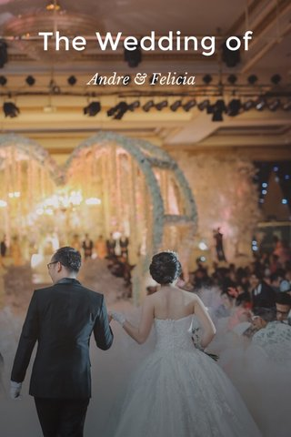 The Wedding of Andre & Felicia