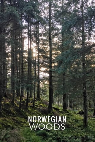 NORWEGIAN WOODS