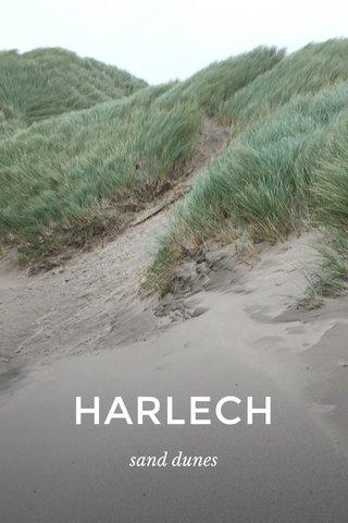 HARLECH sand dunes