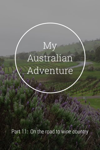 My Australian Adventure Part 11: On the road to wine country