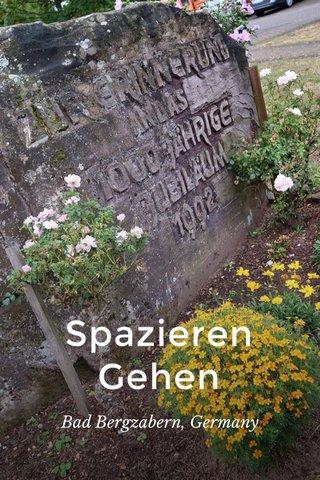 Spazieren Gehen Bad Bergzabern, Germany
