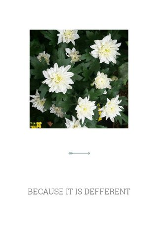 BECAUSE IT IS DEFFERENT