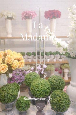 La Madame Blooming Flowers
