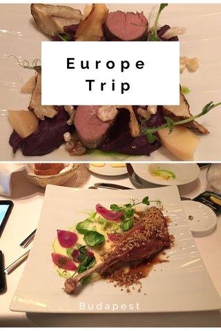 Europe Trip Budapest