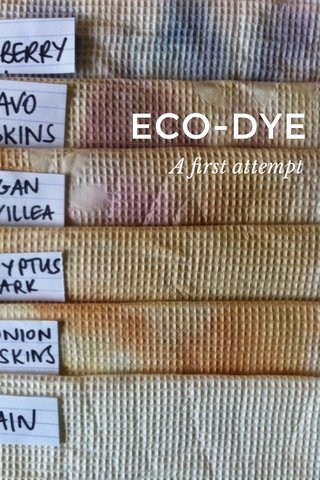 ECO-DYE A first attempt