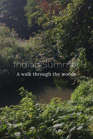 Indian Summer A walk through the woods