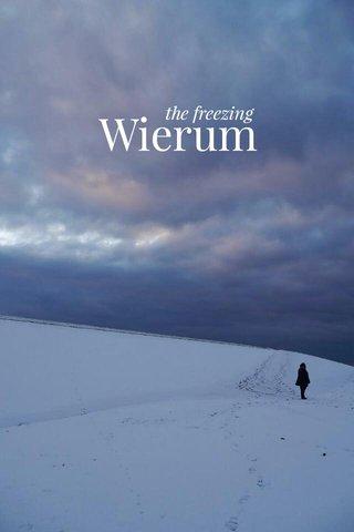 Wierum the freezing