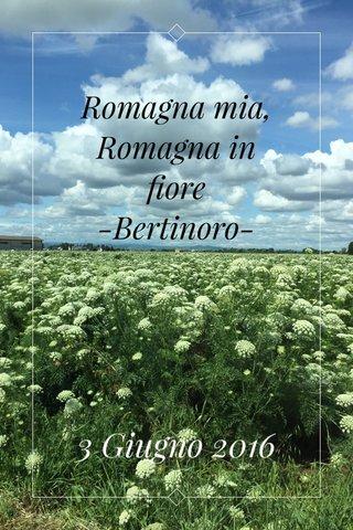Romagna mia, Romagna in fiore -Bertinoro- 3 Giugno 2016