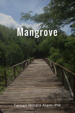 Mangrove Taman Wisata Alam, PIK