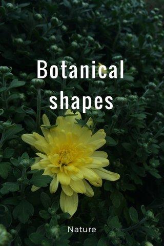 Botanical shapes Nature