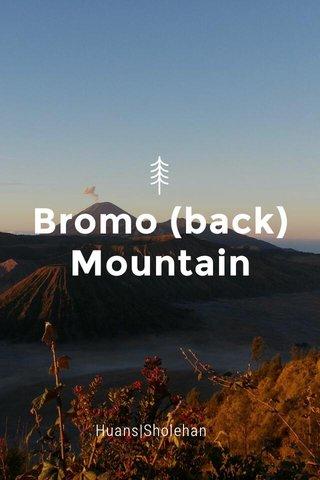 Bromo (back) Mountain Huans|Sholehan