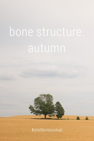 bone structure: autumn #stellerminimal