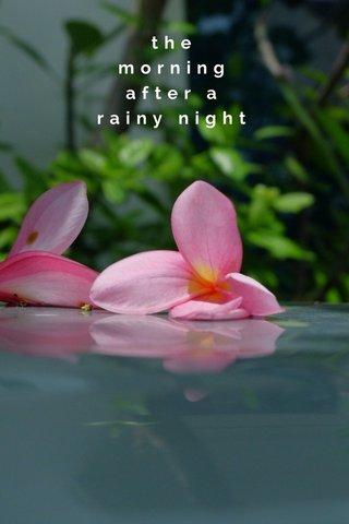 the morning after a rainy night #stellerstills