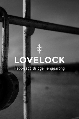 LOVELOCK Repo-repo Bridge Tenggarong