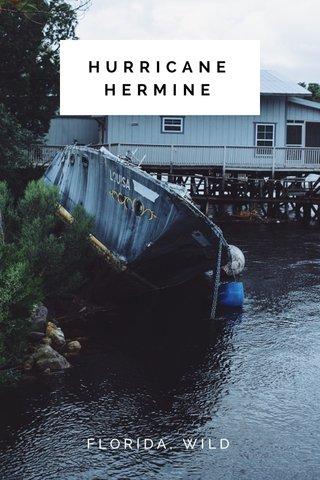 HURRICANE HERMINE FLORIDA, WILD