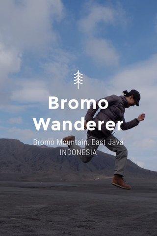 Bromo Wanderer Bromo Mountain, East Java INDONESIA