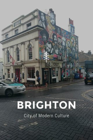 BRIGHTON City of Modern Culture