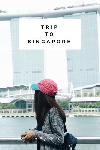 TRIP TO SINGAPORE By Wid