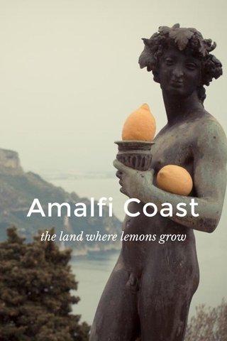 Amalfi Coast the land where lemons grow