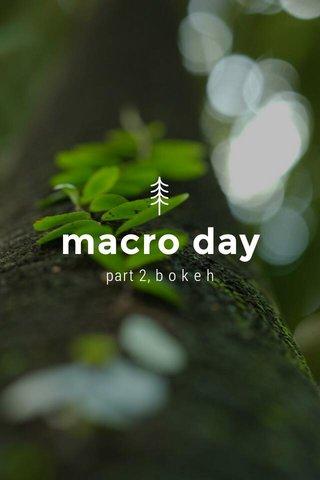 macro day part 2, b o k e h